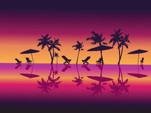 Purple Night Sea Palms Beach. Royalty Free Stock Photo