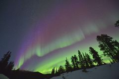 Purple northern lights Royalty Free Stock Photo