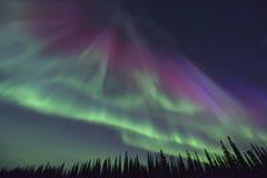 Purple northern lights stock photo