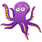 Purple Octopus Isolated on white Stock Image