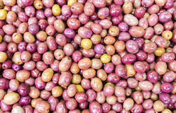 Purple olives Royalty Free Stock Image