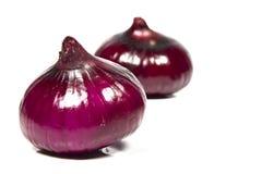 Purple onion Royalty Free Stock Image