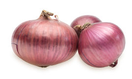 Purple onion Royalty Free Stock Photography
