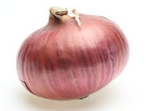 Purple onion Stock Images