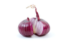 Purple onion sliced on half. Isolated on the white background Royalty Free Stock Images