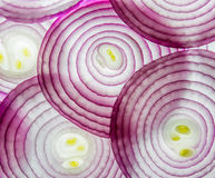 Purple onion Stock Photos