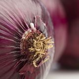 Purple onions Royalty Free Stock Photography