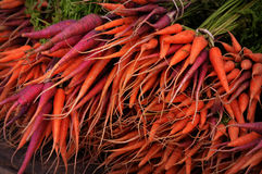 Purple and Orange Carrots. At the Dane County Farmers Market in Madison, WI Stock Photography