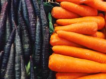 Purple and orange carrots Royalty Free Stock Photography
