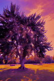 Purple Orange Color Shifted Tree Stock Images