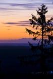 Purple orange sunrise with fir silhouette. Shoot in sweden Stock Photo