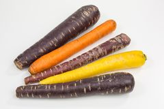 Purple, orange and yellow carrots. Carrots in purple, orange and yellow - purple carrots are especially high in anthocyanin stock photos