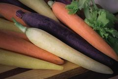 Close up of fresh colorful carrots. Purple, orange, and yellow carrots fresh and ready for cooking and eating Stock Photo