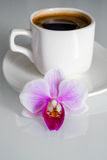 Purple orchid. On the background a cup of coffee Royalty Free Stock Photography