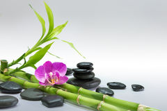 Purple orchid with bamboo and black stones - gray background. Preparation for spa: candle, massage with zen black stones, purple orchid and bamboo stalk royalty free stock photo