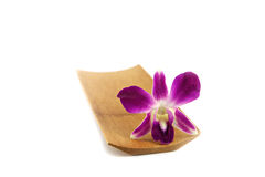 Purple orchid in bamboo dish. Royalty Free Stock Photos