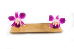 Purple orchid in bamboo dish. Royalty Free Stock Image