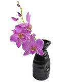 Purple Orchid Branch with sake vase Royalty Free Stock Image