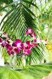 Purple orchid for decorative design. Floral background. stock photo