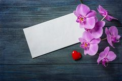 Purple Orchid and envelope Royalty Free Stock Photos