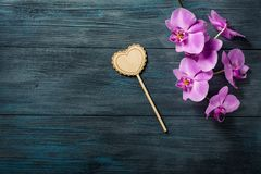 Purple Orchid and  heart. On blue, old wooden background Royalty Free Stock Images