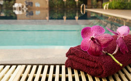 Purple orchid with red towel Stock Images