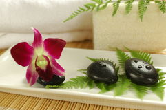 Purple orchid in the spa. Tropical spa set up with orchid, therapy stones, fern leaves, loofah and white towel Stock Image