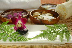 Purple orchid in the spa. Tropical spa set up with orchid, therapy stones, fern leaves, loofah and white towel Stock Images