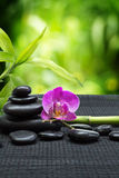 Purple orchid with tower black stones , bamboo on black mat royalty free stock photo
