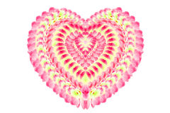 Purple orchid on white background. Heart shape made from pink orchid flowers isolated on white background Stock Image