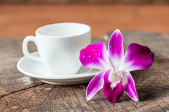 Purple orchid and white coffee cup Stock Photo