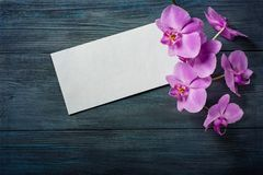 Purple Orchid and envelope Royalty Free Stock Photography