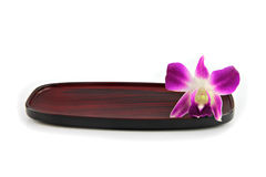 Purple orchid on a wooden plate. Stock Images