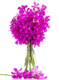 Purple orchids bouquet in a vase. Royalty Free Stock Images