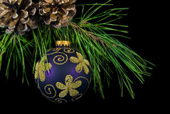 Purple Ornament. Purple and gold ornament hanging from pine bough Stock Images