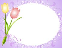 Purple Oval Tulips Flower Frame Border. A background illustration featuring a couple of spring tulips set against an oval shaped frame with soft purple colors Royalty Free Stock Image