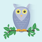 Purple Owl Sitting on a Branch Stock Photography