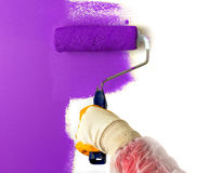 Purple paint roller. In the hand over white wall Royalty Free Stock Photo
