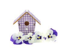 Purple pansies in a reed basket Stock Images