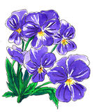 Purple pansy flowers for wedding printing products Royalty Free Stock Images