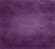 Purple paper texture Stock Photos