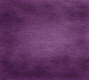 Purple paper texture Stock Photos