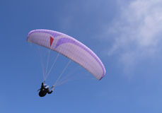 Purple paraglider. Flying, over a blue sky Royalty Free Stock Photography