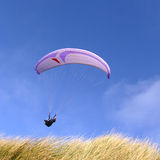 Purple paraglider Stock Photos