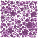 Purple pattern with lined and colored flowers. Stock Photo