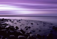Purple Pebble Beach Stock Images
