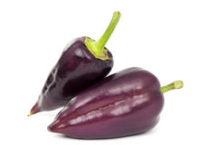 Purple pepper Stock Photos