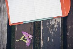 Purple Petaled Flower Beside White Line Paper on Black Wooden Desk Stock Photography