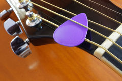 Purple Pick Stock Photography