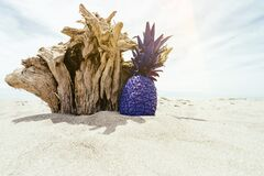 Purple pineapple on beach Stock Photography